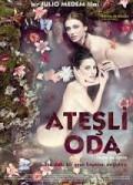 Ateşli Oda (2010) Türkçe Dublaj izle