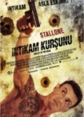 İntikam Kurşunu (2013) Türkçe Dublaj izle