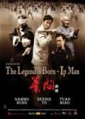 İp Man 3 Efsane Doğuyor (2011) Türkçe Dublaj izle