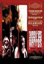 Paramparça Aşklar Köpekler (2000)