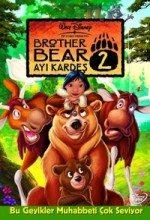 Ayı Kardeş 2 (2006)