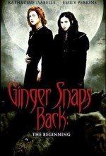 Kurt Kızlar 3 (2005)