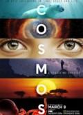 Cosmos Bir Uzay Serüveni (2014) Türkçe Dublaj izle