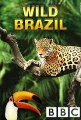 Vahşi Brezilya (2014)