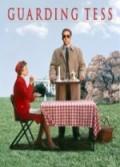 Gönülsüz Koruma (1994) Türkçe Dublaj izle