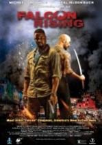 Falcon Rising (2014) Türkçe Altyazılı izle