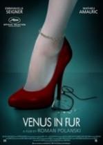 Kürklü Venüs (2013) Türkçe Dublaj izle