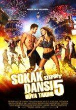 Sokak Dansı 5 Rüya Takımı (2014)