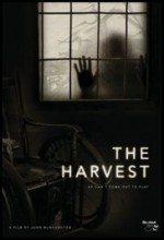 Hasat – The Harvest