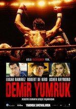 Demir Yumruk (2016)