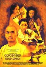 Kaplan ve Ejderha 1 (2000) Türkçe Dublaj izle