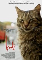 Kedi izle