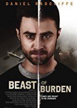 Yük Hayvanı (2018) Türkçe Dublaj izle